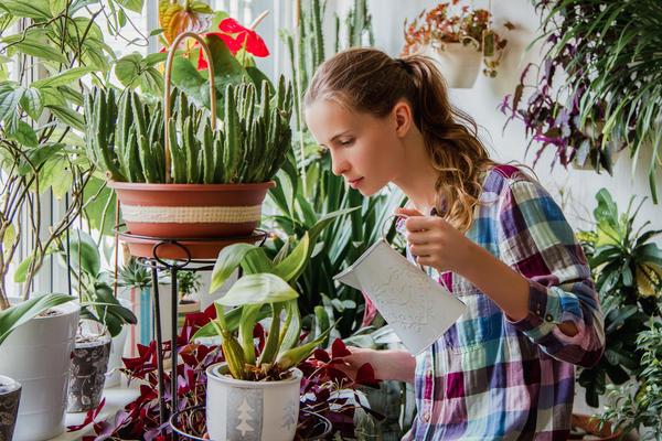 В домашнем цветоводстве мелочей не бывает
