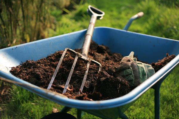 В компостирующем туалете отходы превращаются в компост