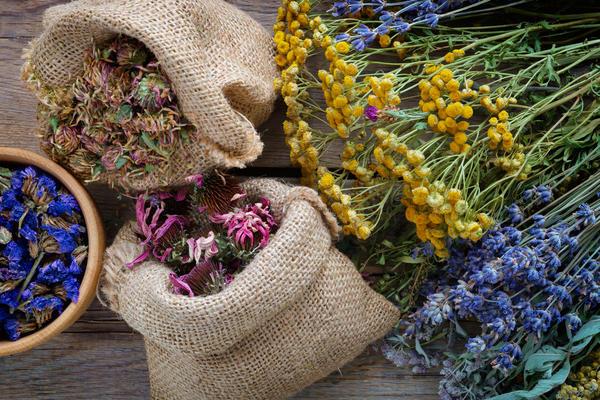 Не все лекарственные травы безопасны для здоровья