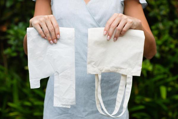 Полиэтиленовый пакет или матерчатая авоська? Что выбираете вы?