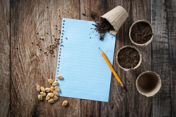 При определении даты посева нужно ориентироваться на средние климатические показатели и следовать расчётам