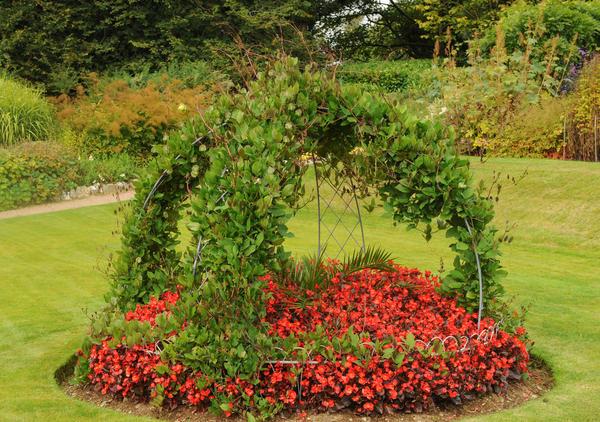 Опоры нужны не только для поддержки растений, но и для красоты