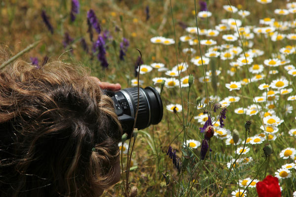 Для съемки портретов растений диапазон объектива камеры не так уж критичен