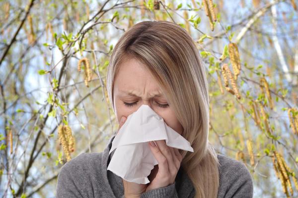 Пыльца березы - один из самых распространенных весенних аллергенов