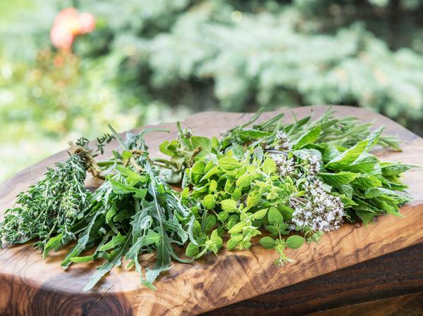 Какие лекарственные растения безопасны для здоровья и не имеют побочных эффектов?