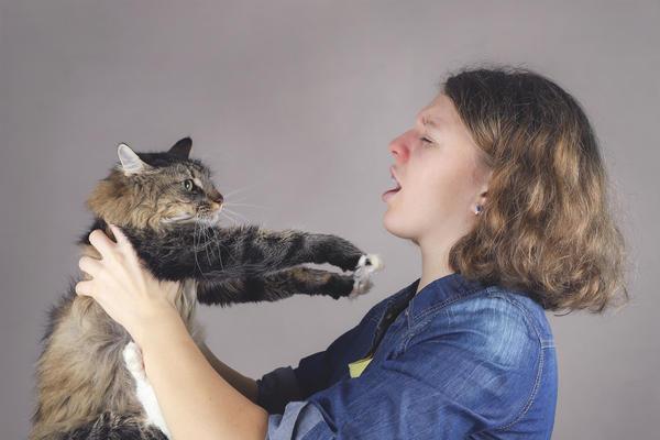 Новая вакцина защитит людей, страдающих от аллергии на кошек