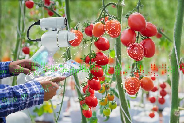 Хотите заглянуть в будущее сельского хозяйства?