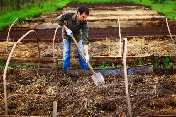 Перепревшая сухая трава — качественное органическое удобрение