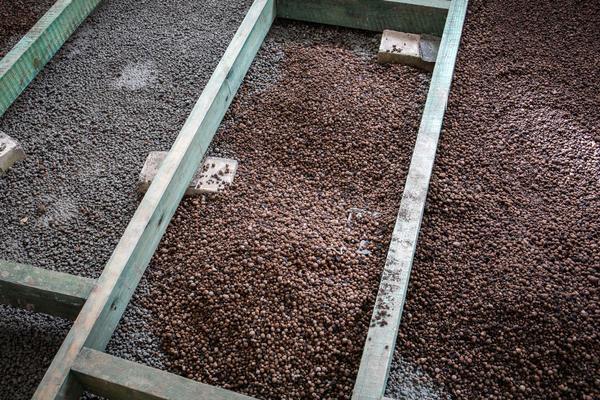 Для защиты от грызунов можно использовать керамзит