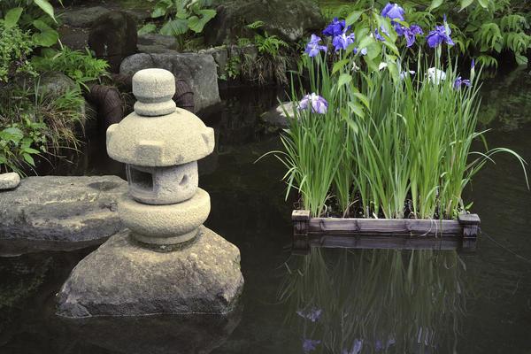 Водоем — сердце японского сада