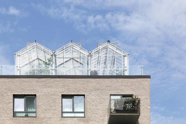 Теплицы на крыше здания в Дании