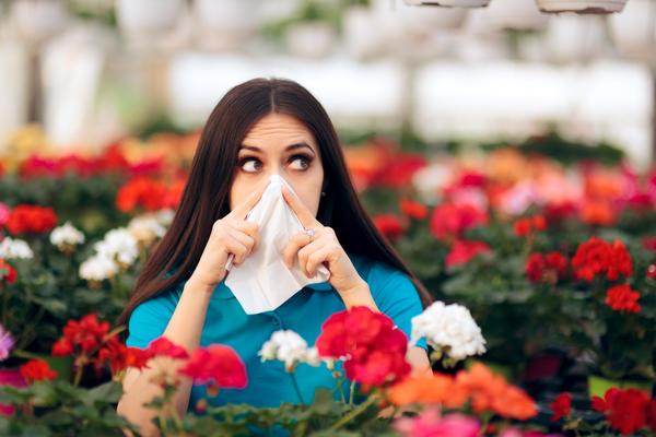 Цветы — не единственная причина аллергии на комнатные растения