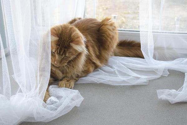 Занавески лучше заменить рулонными шторами
