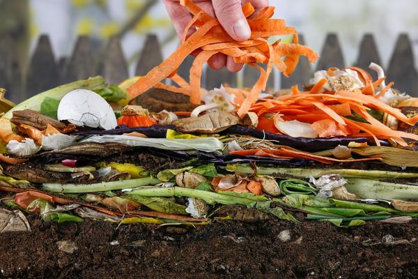 Удобрения из кухонных отходов помогут обойтись практически без химии
