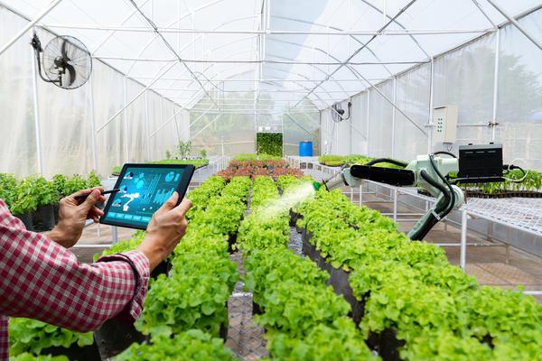 Если вы думаете, что умная теплица — прерогатива больших хозяйств или огородников-любителей с большими финансовыми возможностями, вы заблуждаетесь