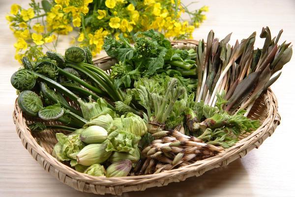 Дикорастущие травы - ингредиенты японской кухни