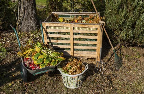 Осенью растительных отходов на даче скапливается очень много