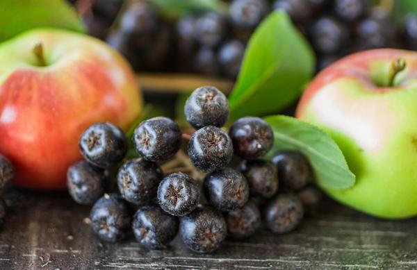 Черноплодная рябина с яблоками - классическое сочетание