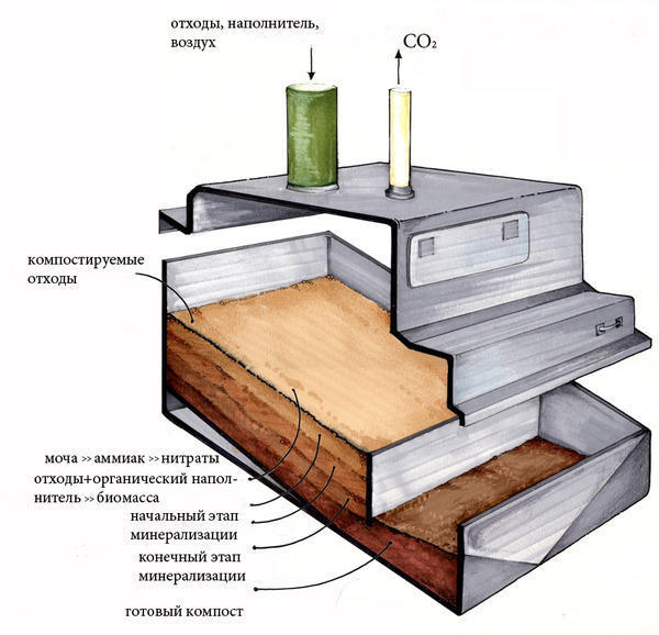 Схема процесса компостирования. Фото сайта clivusne.com
