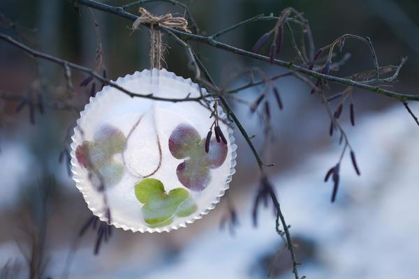 Ледяные сувениры