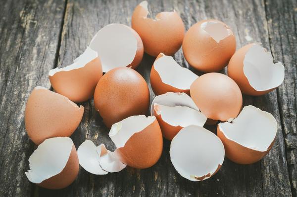Скорлупа яиц - ценный продукт