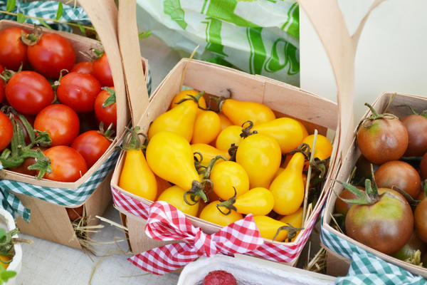 Разнообразие помидоров-черри