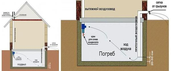 Погреб, оборудованный в подвале дома. Фото с сайта stroyvopros.net