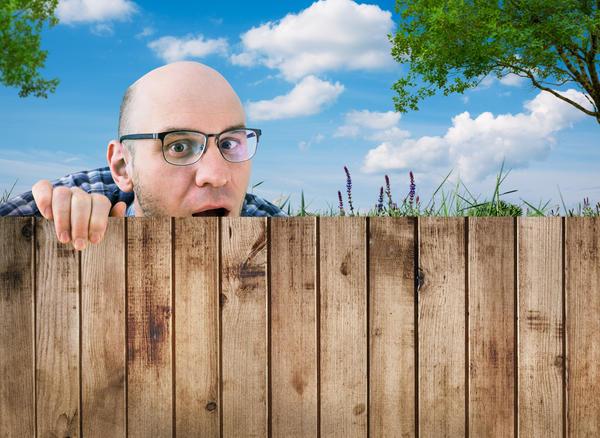 Забор защитит от любопытных соседей