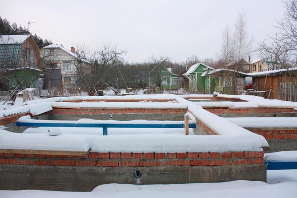 На садоводческом участке должно расти что-то зелёное, а не только различные строения