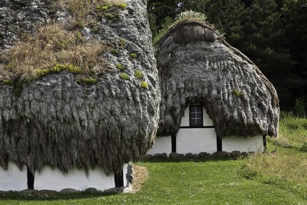 Дом с кровлей из водорослей. Дания, остров Лесё
