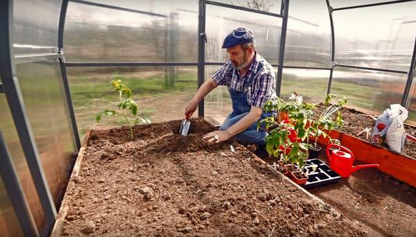 При двухстрочной посадке растениям более комфортно расти в шахматном порядке