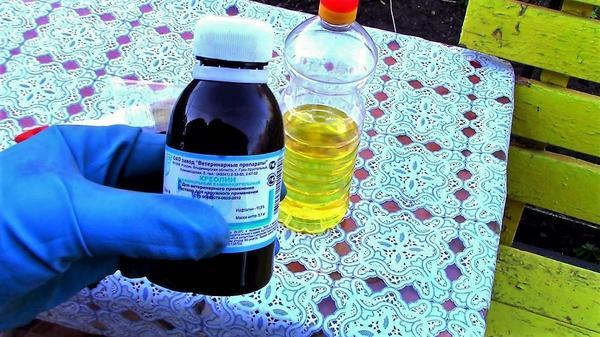 Креолин смешивается с растительным маслом