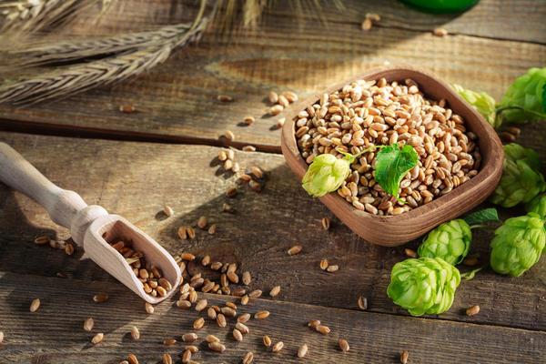 Пшеничное зерно и шишки хмеля подойдут для изготовления закваски