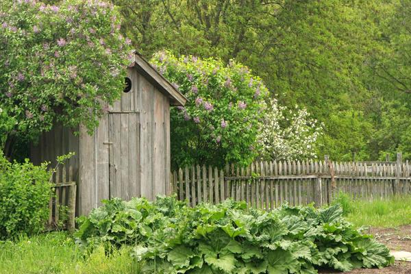 Ямный туалет в конце огорода не устраивает