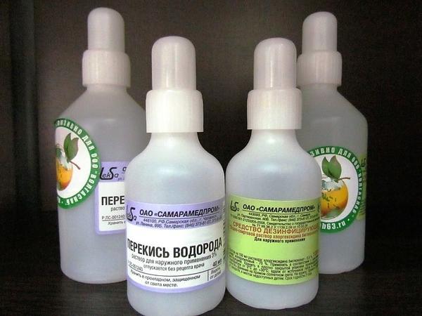 Перекись водорода защитит растения. Фото с сайта missbagira.ru