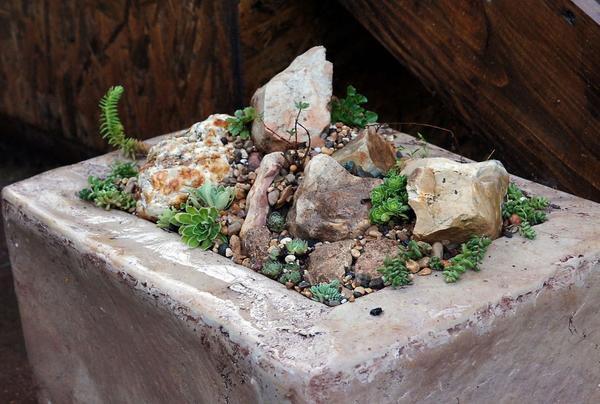 Минирокарий в строительном блоке. Фото с сайта