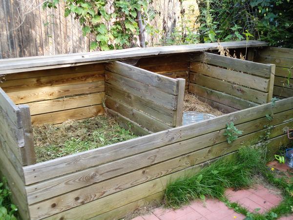 Идеальный компостный ящик. Фото автора