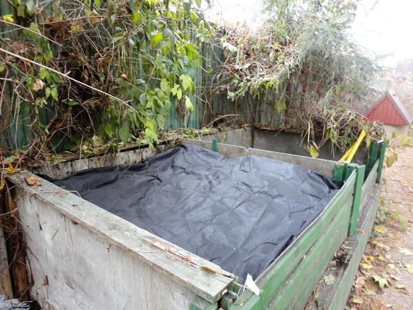 На зиму компост необходимо укрыть. Фото автора