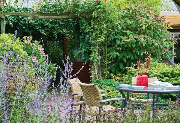 Пряно-ароматические растения используют и при создании ландшафтов, занимающих несколько гектаров земли, и на небольших участках. Фото Марии Ромакиной