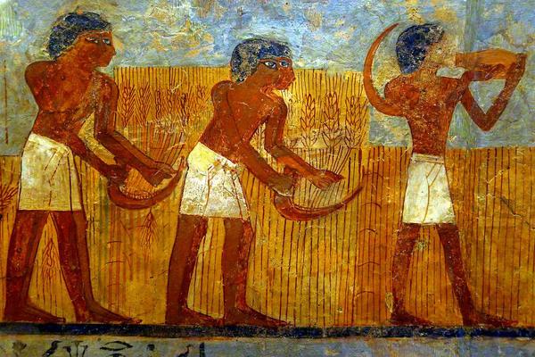Жнецы. Фреска времён фараона Тутмоса III, XV век до н. э. Фото с сайта ru.wikipedia.org