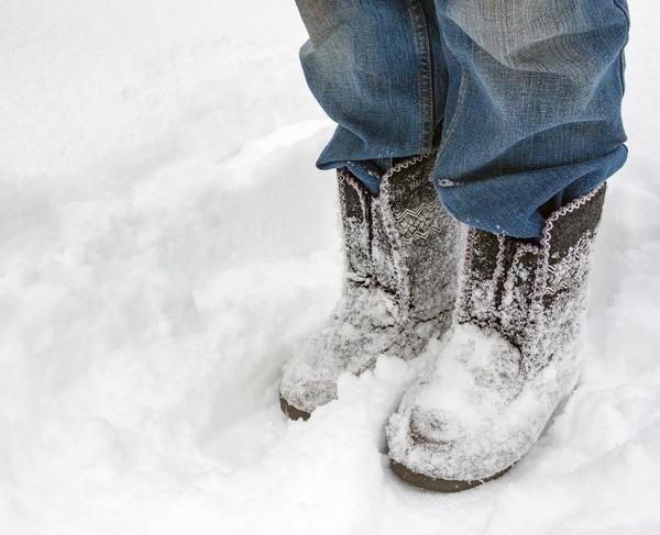 Нужно ли утаптывать снег вокруг деревьев?