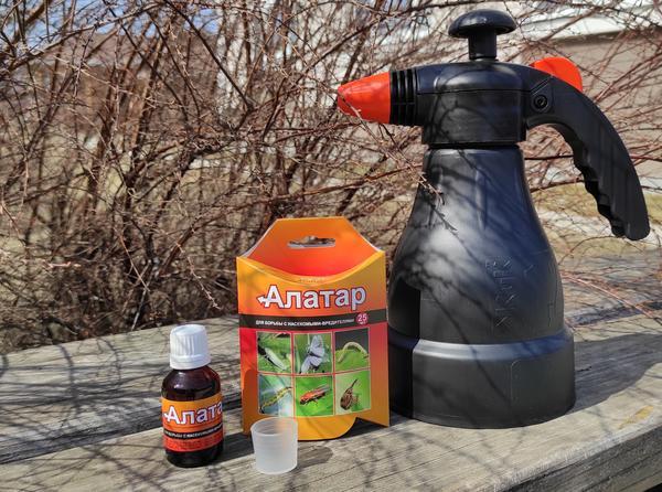 Алатар эффективный универсальный препарат для защиты большинства садово-огородных культур