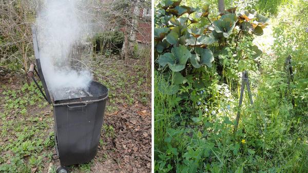 Утилизация садово-огородного мусора важное агротехническое мероприятие. Бескомпромиссная борьба с сорняками первое условие поддержания здоровья сада без всякой химии. Фото автора