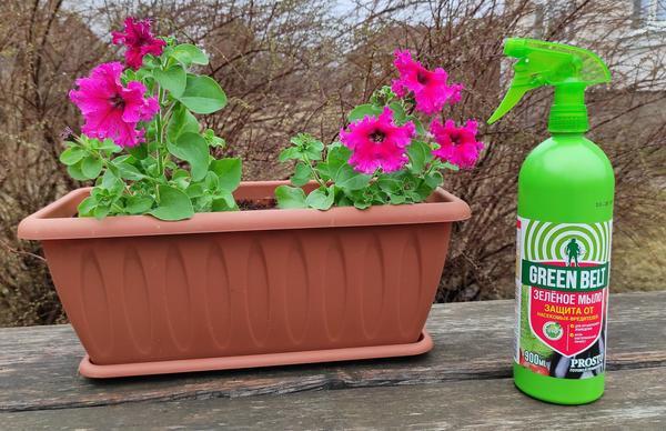 Зеленое мыло экологичное и доступное средство