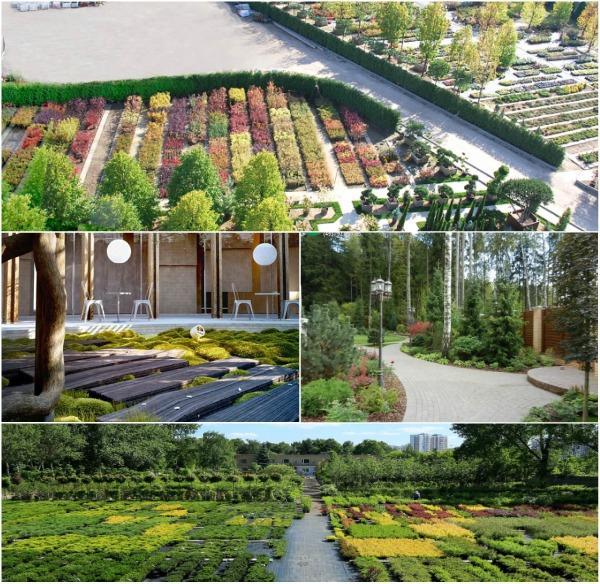 Садовые центры