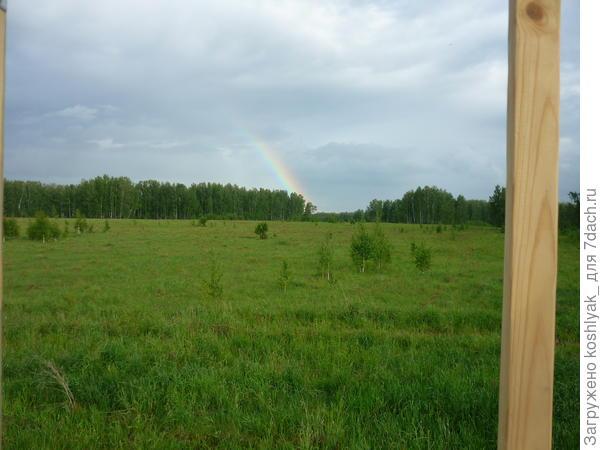Вид в поле после дождя с высоты детского домика.
