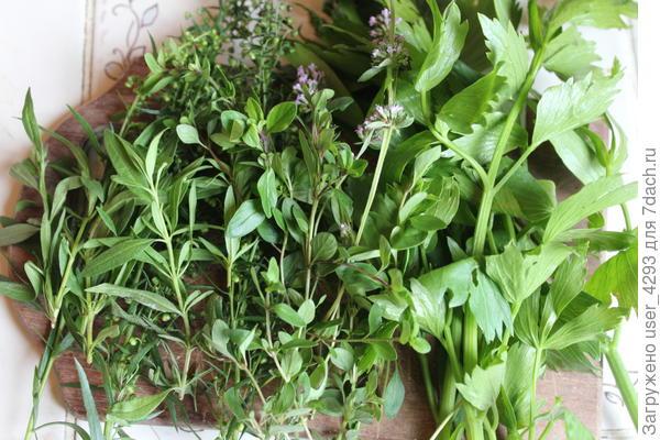 Травы для майонеза. Прекрасно подходят и для супа, и для мяса, и для тушеных овощей.
