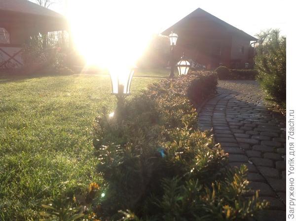 Ноябрьское солнце