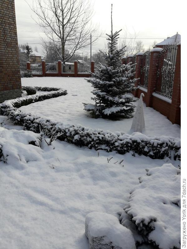 Наконец то выпал первый снег