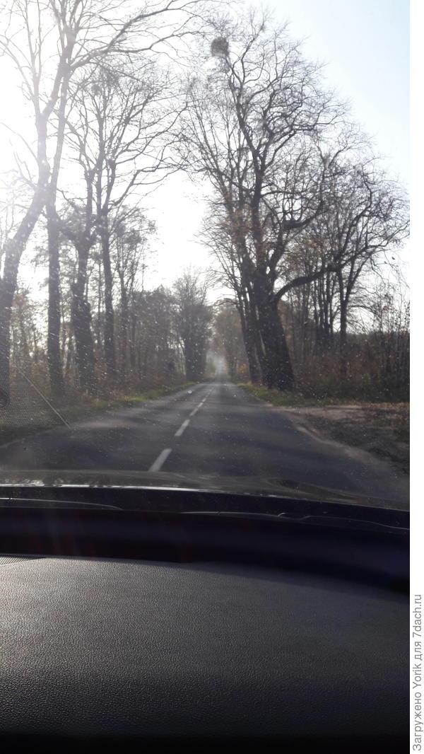 Час ушел на прохождение границы. За это время туман рассеялся, и мы съехав с трассы двинулись по старой дороге, построенной еще немцами в сторону очень маленького городка Брунёва